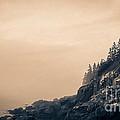 Bass Harbor Light House Mount Desert Island Maine by Edward Fielding