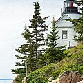 Bass Harbor Light Station Overlooking The Bay by John M Bailey