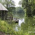Bass Pond Biltmore Estate by Jason O Watson
