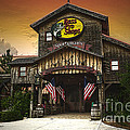Bass Pro Shop by Donna Brown