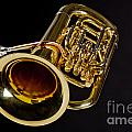 Bass Tuba Brass Instrument Photo In Color 3396.02 by M K Miller
