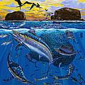 Bat Island Off00139 by Carey Chen