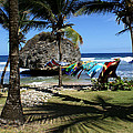 Bathsheba Barbados by Roger Leege