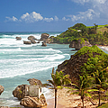 Bathsheba Beach by Brian Jannsen