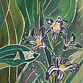 Batik Detail - Pushkinia by Anna Lisa Yoder