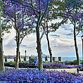 Battery Park In The Spring by Evie Carrier