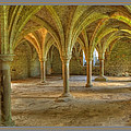Battle Abbey Cloisters by Stephen Barrie
