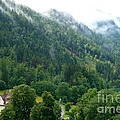 Bavarian Mountain Slope With Mist by Carol Groenen