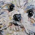 Baxter by Susan Elizabeth Jones