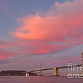 Bay Bridge Sunset by Kate Brown