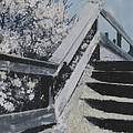 Bay Head Steps
