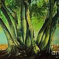 Bay Leaves Tree by Alessandra Andrisani