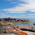 Bay Of Fires Panorama by Glen Johnson