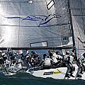 Bay Regatta Action by Steven Lapkin