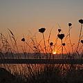 Bay Sunset by HW Kateley