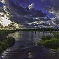 Bayou Beauty by Brian Wright