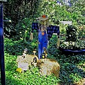 Bayou Crow Scarecrow At Bellingrath Gardens by Marian Bell