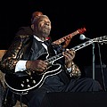 B.b. King by William Morgan