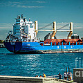 Bbc Elbe On St Clair River by Ronald Grogan