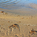 Beach And Rippled Water. by Jan Brons