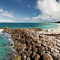 Beach At Atlantis Resort by Amy Cicconi