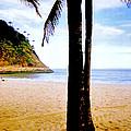 Beach At Ipanema - 2 by Glenn Aker