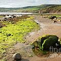 Beach At Robin Hoods Bay by Deborah Benbrook