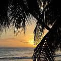 Beach At Sunset 1 by Anita Burgermeister