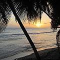 Beach At Sunset 4 by Anita Burgermeister
