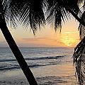 Beach At Sunset 5 by Anita Burgermeister