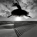 Beach Ballerina by Nina Bradica
