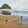 Beach Birds Impasto by Sharon Foster