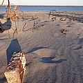 Beach Brick by Robert Nickologianis