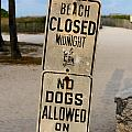 Beach Closed And No Dogs Allowed by Jannis Werner