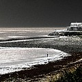 Beach Comber by Ron White