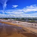 Beach Combing by Rachel Cohen