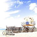 Beach Cruiser by Margie Amberge