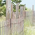 Beach Fence by Joan Gal-Peck
