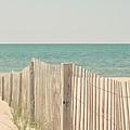 Beach Fence Ocean Shabby Photograph by Elle Moss