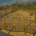 Beach Fence by Susan Candelario