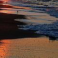 Beach Glow by Mim White