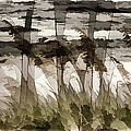 Beach Grasses by Peter Hogg