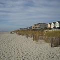Beach House by Vennie Deas Moore