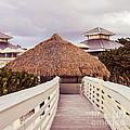 Beach Hut by Lacie Oakey