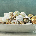 Beach In A Bowl by Priska Wettstein