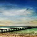 Beach by Jelena Jovanovic
