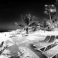 Beach Lounging by John Rizzuto