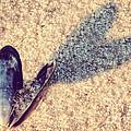 Beach Love by Emily Kay