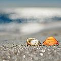 Beach Lovers by Laura Fasulo