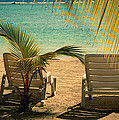 Beach Paradize by Zina Zinchik